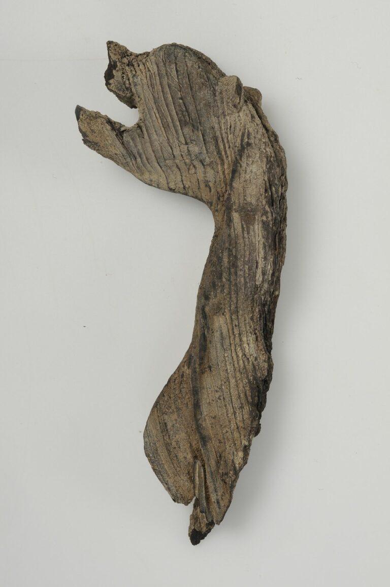 Drakhuvud i trä